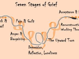 seven stages of Grief