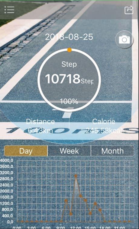 Diggro DI10 Sports Plus App Dashboard