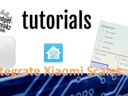 Integrate Xiaomi scales tutorial